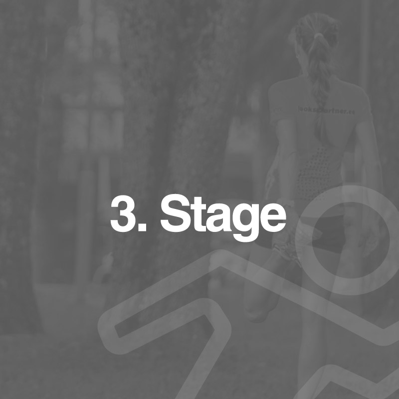 3. Stage
